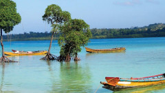 Cheap flights from Chennai to Port Blair for ₹6681 ($103)