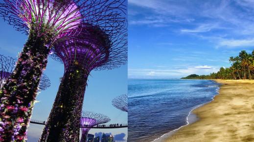 singapore and fiji
